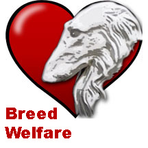 BCOA Breed Welfare graphic