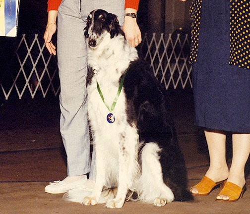 1990 High in Obedience Trial